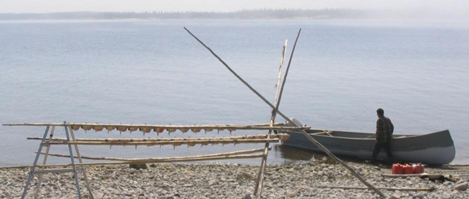 Tendedero y canoa carguera