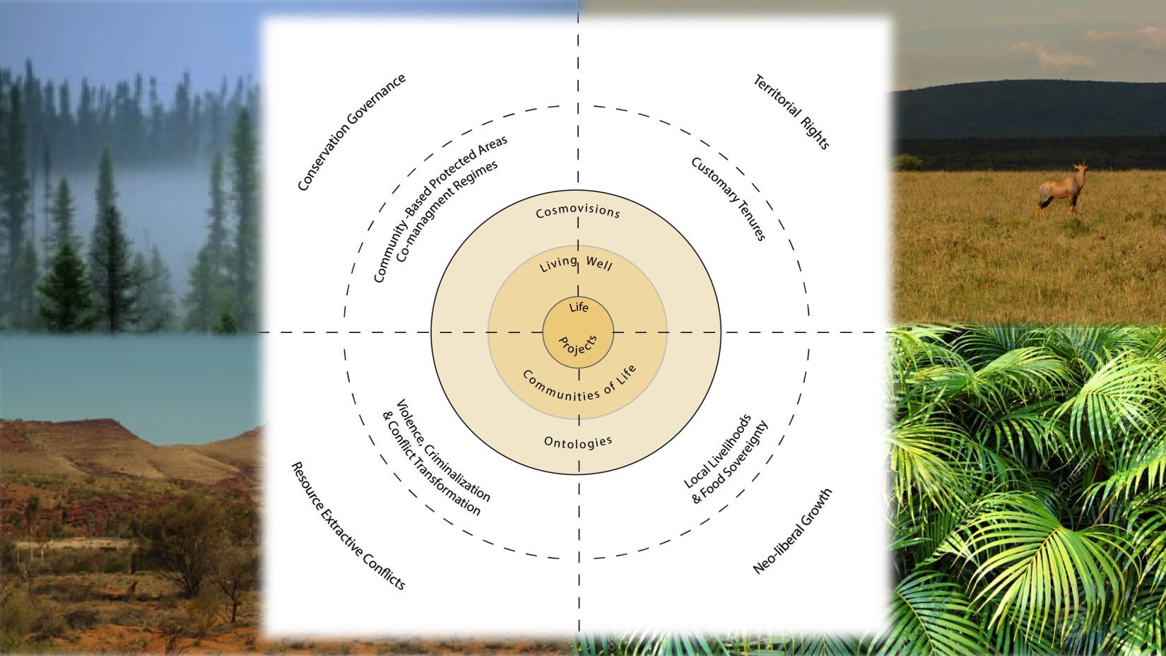 CICADA conceptual scheme
