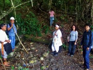 Réserve agroforestière - L'organisation totonaque des Voladores a guidé les chercheurs de l'Université de Veracruz dans une zone dédiée à la restauration de la forêt et la recherche communautaire par les autorités municipales en 2013.